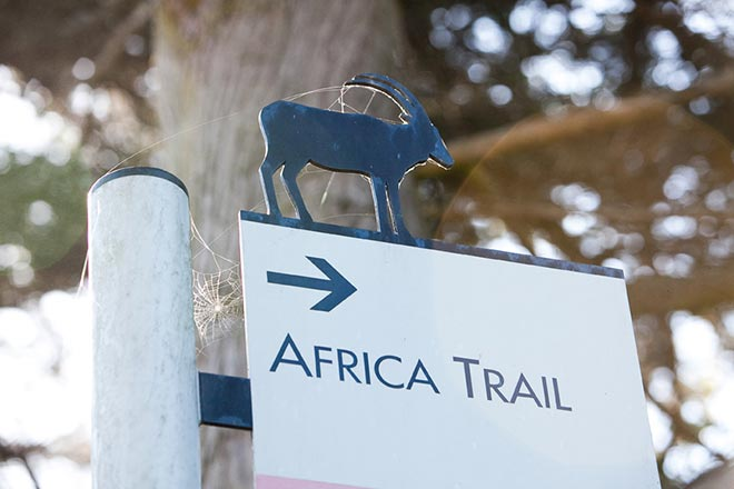 San Francisco zoo sign for the Africa Trail