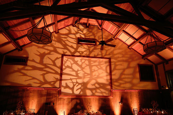 tree gobo and event lighting at San Francisco zoo wedding